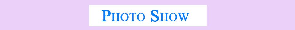 1PC Women Hollow Lace Flower Vest Crop Top Cross Strap Bustier Cut Out Padded Bra Blouse Bustier Crop Tank Top Underwear