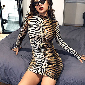 Sexy Club Party Dress Women Autumn Winter Leopard Striped Zebra Dress Turtleneck Sheath Streetwear Short Dress Vestidos De Festa