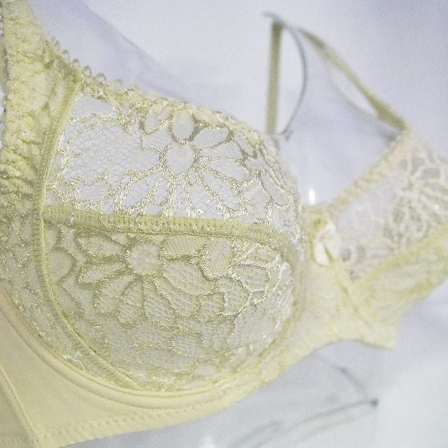 Womens Lace Bras Transparent Underwire Bra Sexy Lingerie Underwear Perspective Plus Size Bralette Large Cup 34-44 B C D DD E F